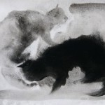 frederic-belaubre-two-cats-