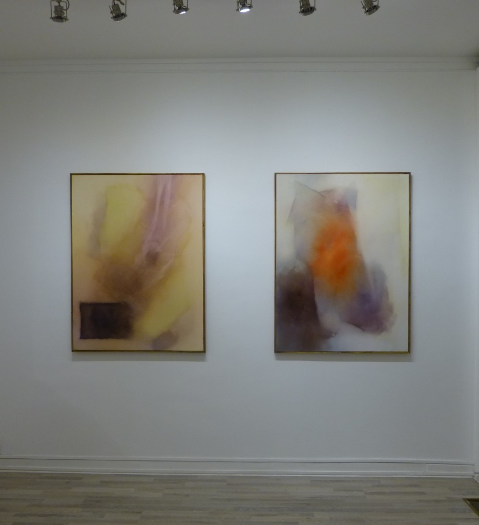 transparece-belaubre-exhibition