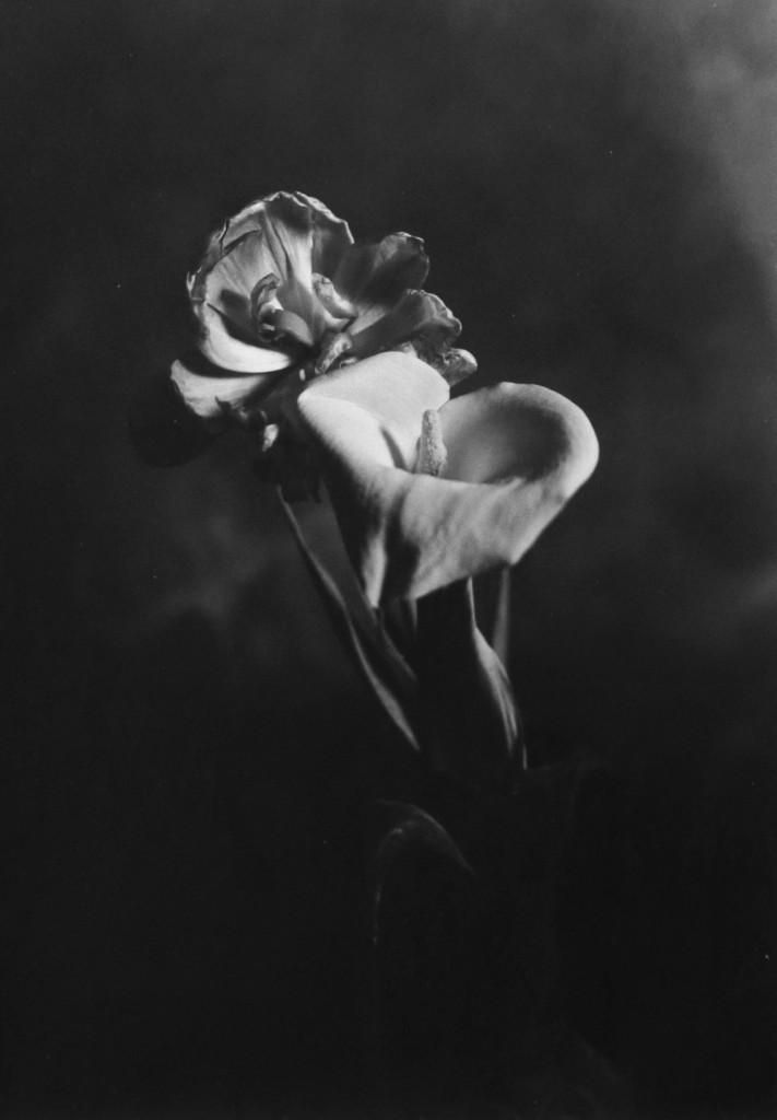 abbraccio_particolare-livin_art