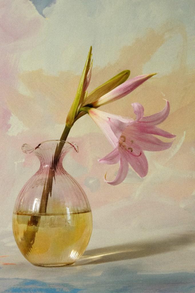 natura morta 14 cm 26,62x40-fortuna-livin_art-fotografia
